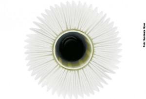 Glasklares Whirlpool-Wasser